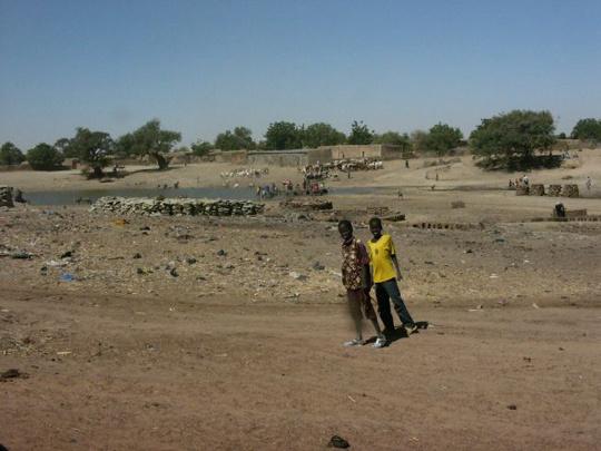 geszter: Mali