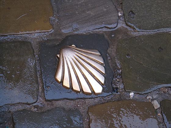 kreashot: arany kagyló