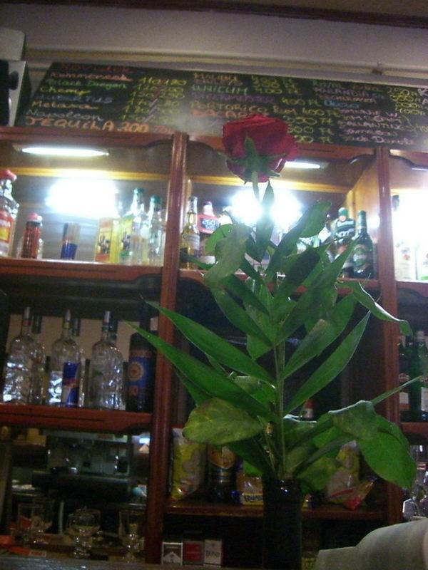 Rózsa a pulton
