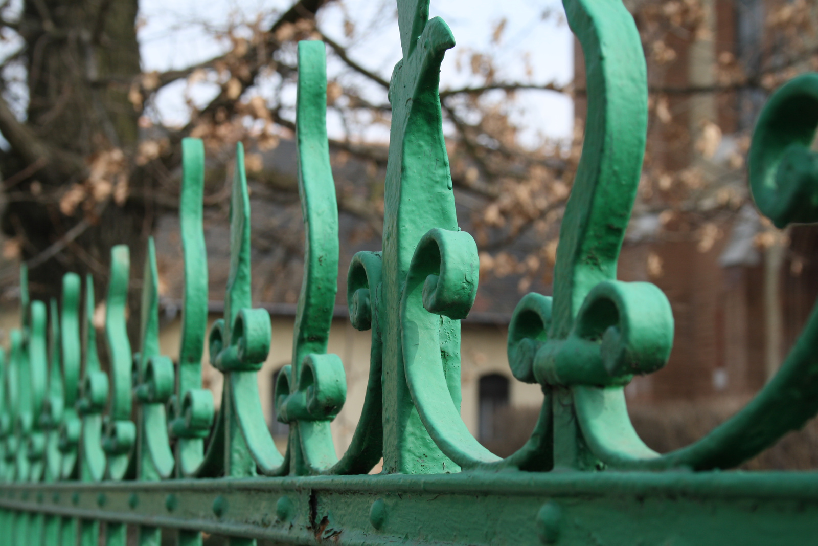 Zöld kerítés