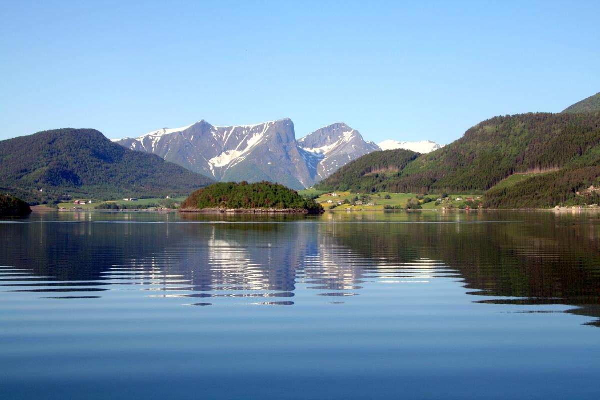 Rødvenfjorden 5