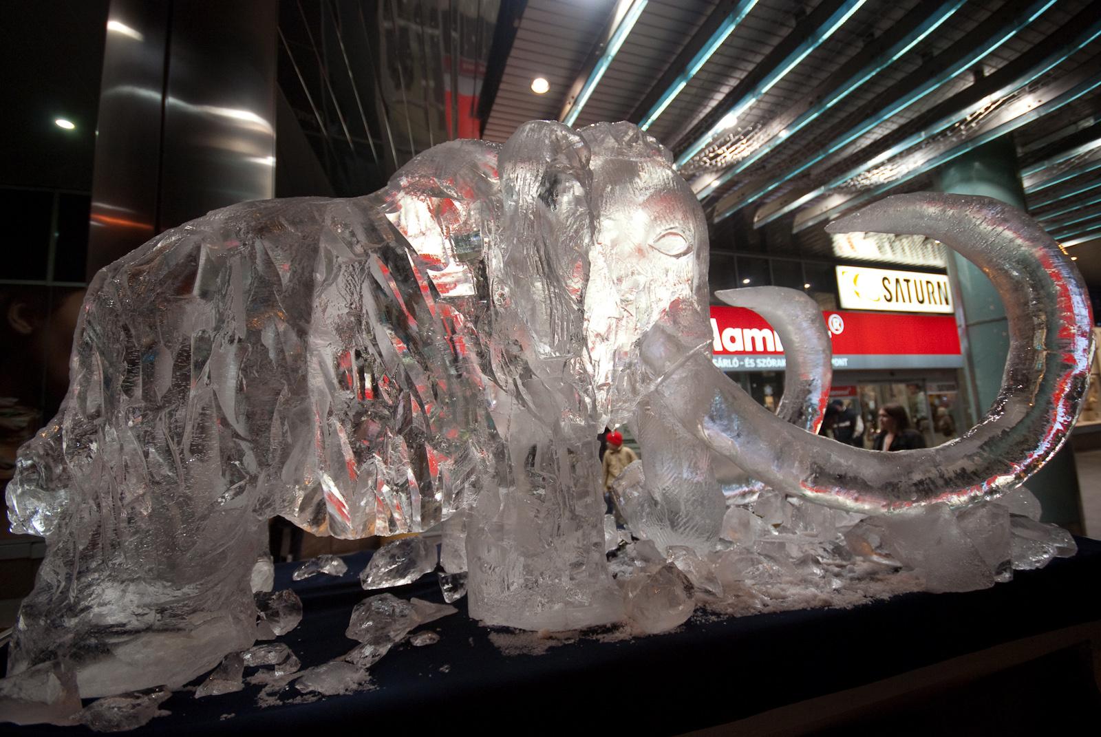 Jámbor jégmamut